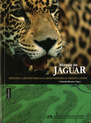 Mirada de jaguar