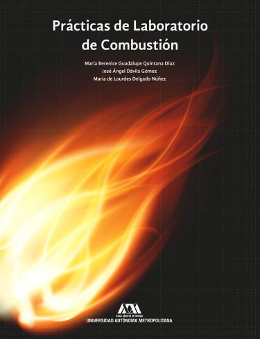 Prácticas de laboratorio de combustión