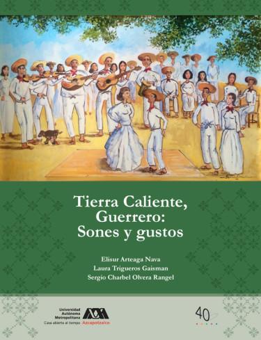 Tierra Caliente, Guerrero: sones y gustos