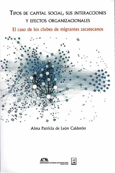 Tipos de capital social, sus interacciones y efectos organizacionales