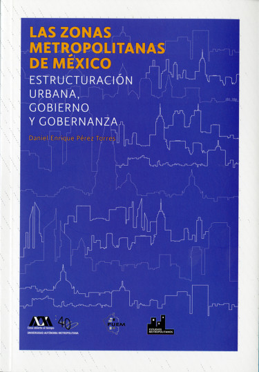 Zonas metropolitanas de México, Las