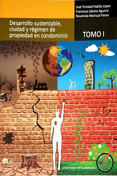 Desarrollo sustentable, ciudad y régimen de propiedad en condominio
