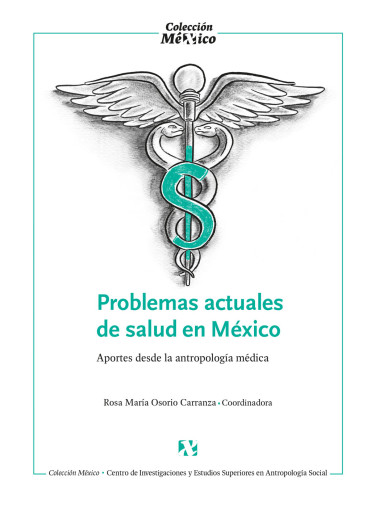 Problemas actuales de salud en México.