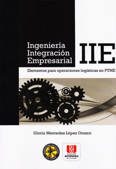 Ingenieria Integración Empresarial- IIE.