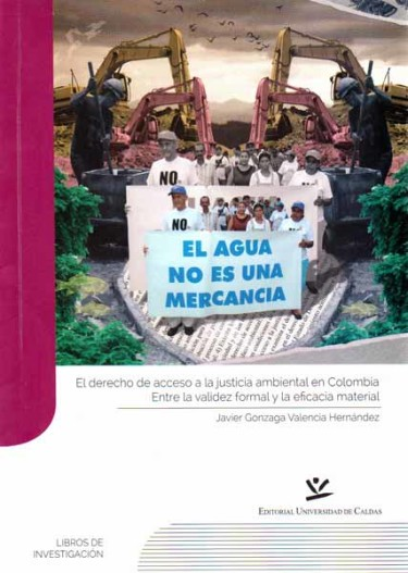 El derecho de acceso a la justicia ambiental en Colombia. Entre la validez formal y la eficacia material