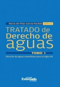 Tratado de derecho de aguas. Tomo I.