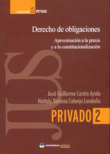 Derecho de obligaciones: Aproximación a la praxis y a la constitucionalización