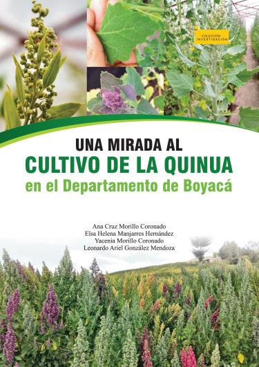 Una mirada al cultivo de la quinua en el Departamento de Boyacá