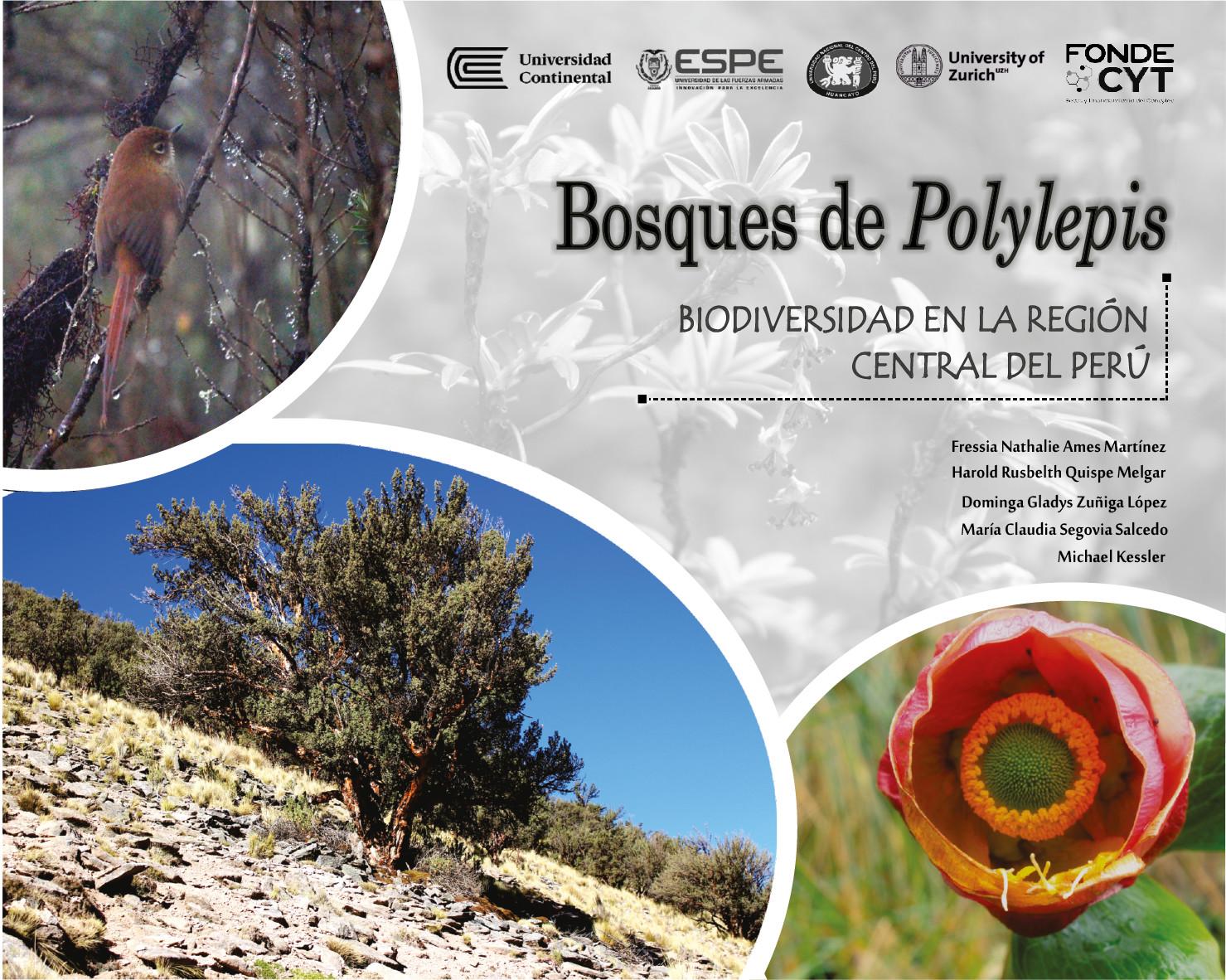 Bosques de Polylepis