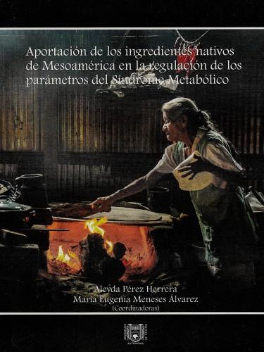 Aportación de los ingredientes nativos de Mesoamérica en la regulación de los parámetros del Síndrome Metabólico