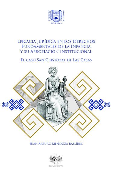 Eficacia Jurídica en los Derechos Fundamentales de la Infancia y su apropiación institucional.