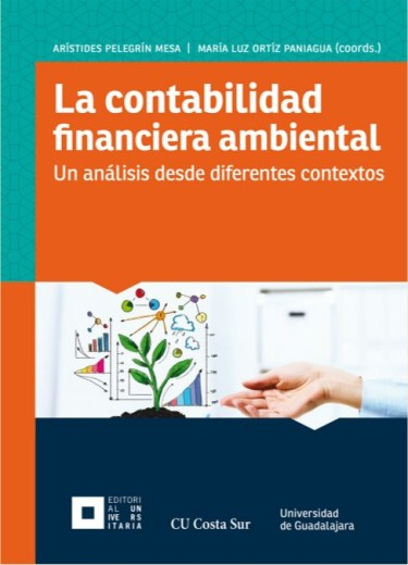 La contabilidad financiera ambiental