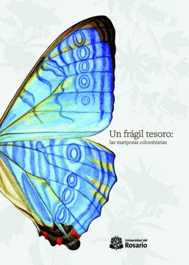 Un frágil tesoro: las mariposas Colombianas