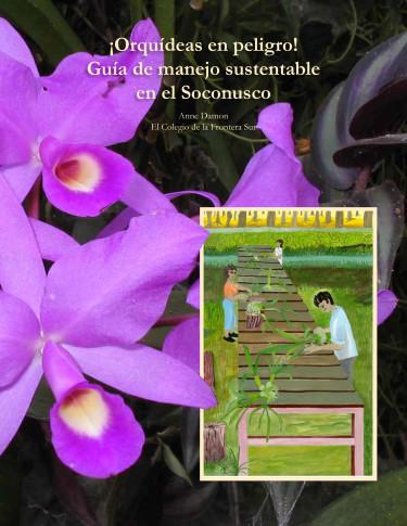 ¡Orquídeas en peligro! Guía de manejo sustentable en el Soconusco