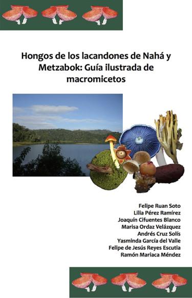 Hongos de los lacandones de Nahá y Metzabok: Guía ilustrada de macromicetos