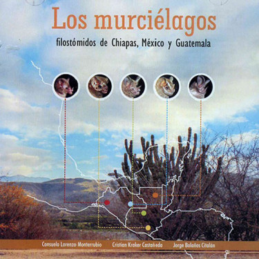 Los murciélagos filostómidos de Chiapas, México y Guatemala