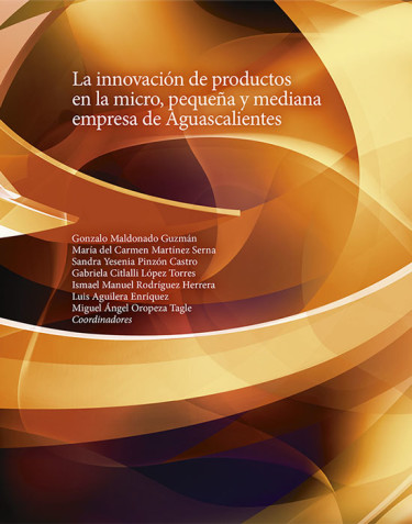 La innovación de productos en la micro, pequeña y mediana empresa de Aguascalientes