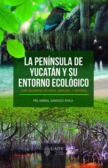 La Península de Yucatán y su entorno ecológico