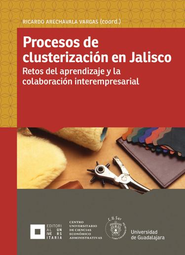 Procesos de clusterización en Jalisco