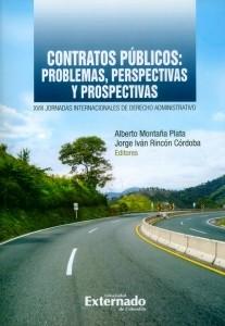 Contratos públicos: problemas, perspectivas y prospectivas. XVIII Jornadas Internacionales de Derecho Administrativo
