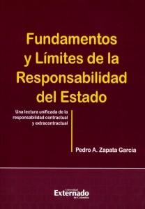 Fundamentos y límites de la responsabilidad del Estado.