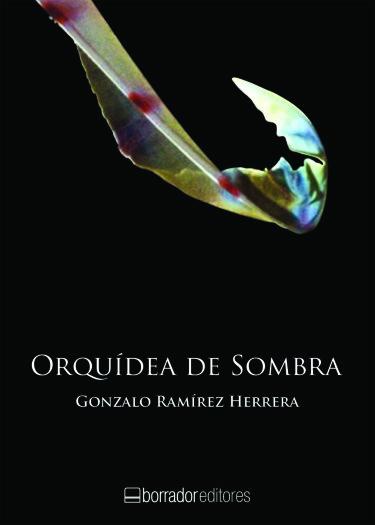 Orquídea de sombra