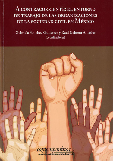 A contracorriente: el entorno de trabajo de las organizaciones de la sociedad civil en México