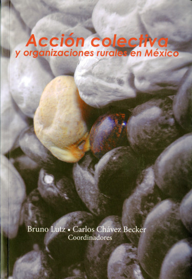 Acción colectiva y organizaciones rurales en México