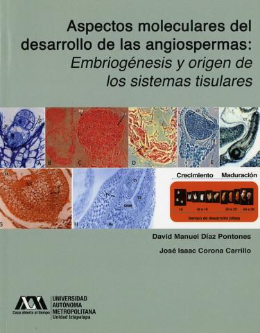 Aspectos moleculares del desarrollo de las angiospermas