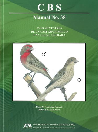 Aves silvestres de la UAM-Xochimilco